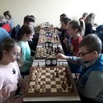 szachy 008